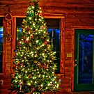 The Jones Family Christmas Tree! by Jeremy  Jones