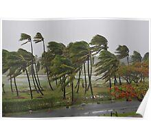 Cyclone Mick in Fiji  Poster