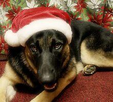 Santa Indy by Sandy Keeton