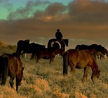 Cowboys Dream  by Jeanne  Nations