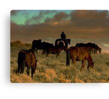 Cowboys Dream  Canvas Print