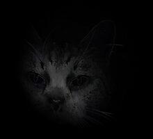 Lurking In The Dark by Jonice