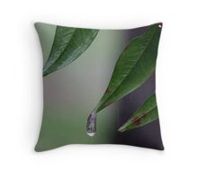 Icy Rain in NC #2 Throw Pillow