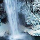 Frozen Winter Falls by Tori Snow