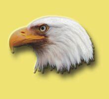Eagle Shadow by Gail Bridger