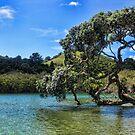 Water Tree by TristanPhoenix