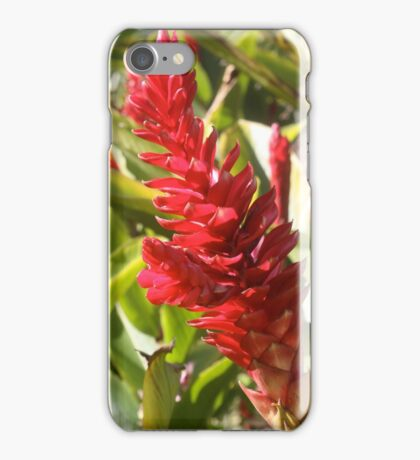 Vibrant Tropical Torch Ginger on Fire iPhone Case/Skin