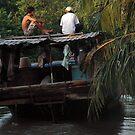 Vietnam - Mekong Delta by Thierry Beauvir