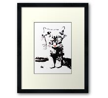 Kitten. Framed Print