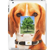 pokemon dogtree, it's a new pokemon iPad Case/Skin