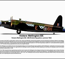 Vickers Wellington BX Profile by coldwarwarrior