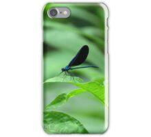 Damselfly Balancing Act iPhone Case/Skin
