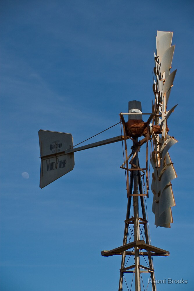 Windmill, White Peak Rd, Geraldton by Naomi Brooks