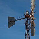 Windmill, White Peak Rd, Geraldton by Naomi Brooks