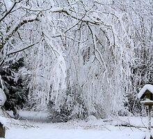 White Christmas by Pamela Jayne Smith
