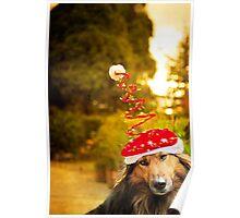 Merry DOG christmas Poster
