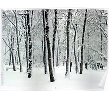 Snowy Day Poster