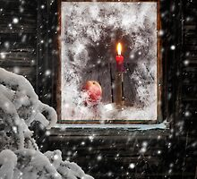 Winter's atmosphere by Veikko  Suikkanen