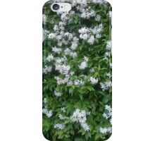 Natural wonder iPhone Case/Skin