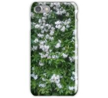 Natural wonder iPhone Case/Skin