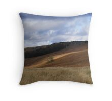 view of stanage edge  Throw Pillow
