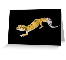 Leopard gecko on black Greeting Card