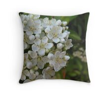 Bushy Blossom. Throw Pillow