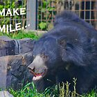 Happy sun bear saying You make me smile by Ron  Hanson