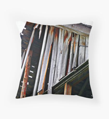 Decaying Barn Throw Pillow