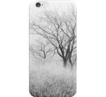 At the Brink of Winter iPhone Case/Skin