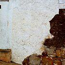 Napier lane wall by fourthangel
