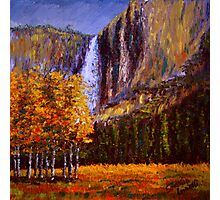 Aspens and Yosemite Falls Photographic Print