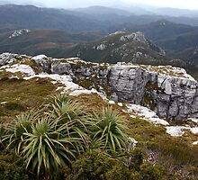 View from Frenchmans Cap, Franklin-Gordon Wild Rivers National Park, Tasmania by Michael Boniwell