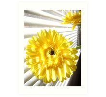 Yellow Gerberas by the Window Art Print