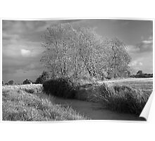 Autumn Rhyne Infra-red Poster