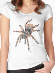 Mexican Red Knee Tarantula Tee Women's Fitted Scoop T-Shirt