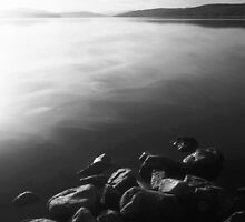 Anchored by Rock by PigleT