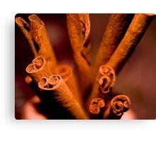 Cinnamon  Swirl Canvas Print