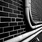 Pipe Dream by Clayton  Turner