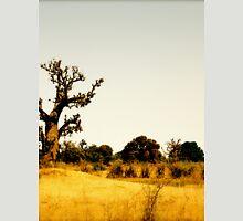 a vast Senegal landscape Unisex T-Shirt