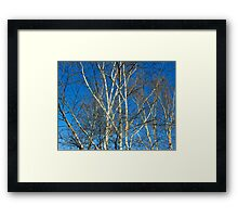 In the raw Framed Print