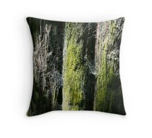 spider's abode Throw Pillow