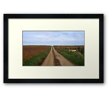 Country Roads- Through the Fields Framed Print