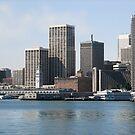 Port of San Francisco  by Ellen Cotton