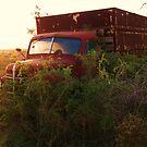 setset on pop's truck by briannaclark91