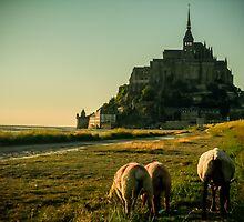 Mont Saint-Michel by garajelab