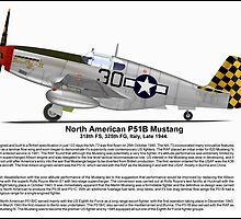 North American P51B Profile by coldwarwarrior
