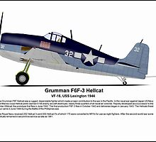 Grumman Hellcat Profile by coldwarwarrior