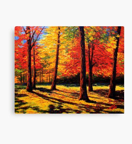 Maple Trees Park Canvas Print
