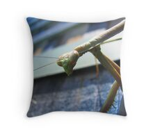 you talkin' to me!? Throw Pillow